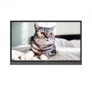 Interactive Flat Panel, 70 inch,  anti bacteria RP704K
