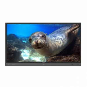 Interactive Flat Panel, 86 inch,  anti bacteria RP860K